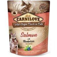 Carnilove Dog Pouch Paté Salmon & Blueber Puppies 300g