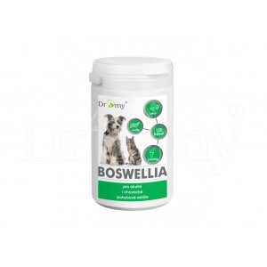 Dromy Boswellia 120 tbl.