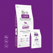 Brit Care Dog Grain-free Giant Salmon & Potato 12kg