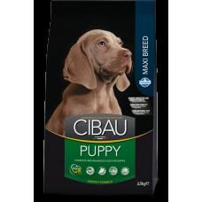 Cibau Puppy Maxi 12kg + 2kg ZDARMA (do vyprodání)