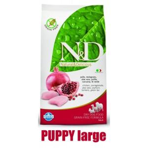 N&D Grain Free DOG Puppy M/L Chicken & Pomegranate 12kg + barel ZDARMA