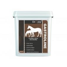 Dromy Gastroline 3000 g