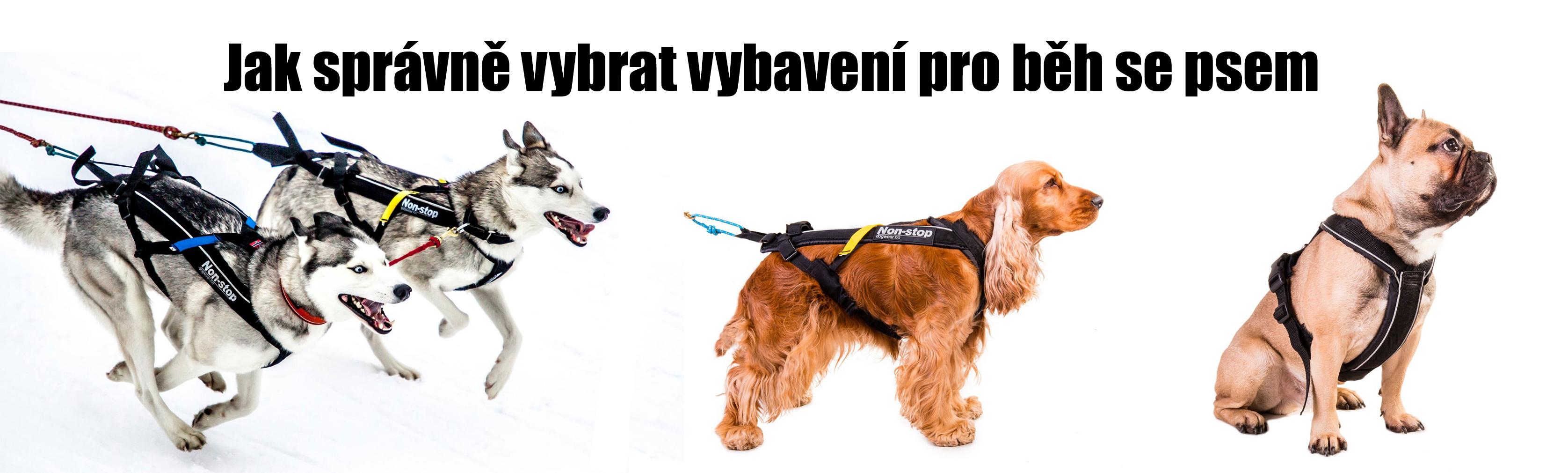 Správný výběr vybavení pro běh se psem