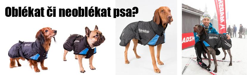 Nestyďte se obléct svého psa